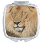 Adorable Lion Compact Mirror