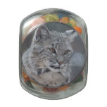 Amazing Bobcat Glass Candy Jar