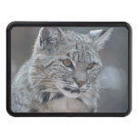 Amazing Bobcat Trailer Hitch Cover