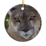 Cougar Pounce Ornament