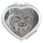 Creeping Bobcat Mirror For Makeup
