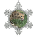 Gorgeous Sleek Cheetah Licking His Nose Snowflake Pewter Christmas Ornament