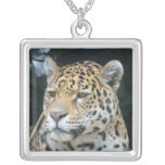 Jaguar Glare Silver Plated Necklace