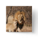 Lion and Lion Cub Button
