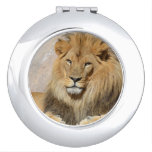 Male Lion Makeup Mirror