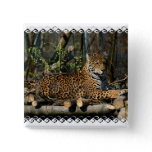 Panthera Jaguar Pin