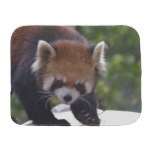 Prowling Red Panda Burp Cloth