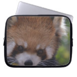 Prowling Red Panda Laptop Sleeve