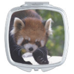 Prowling Red Panda Mirror For Makeup