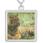Resting Tiger  Necklace