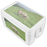 Sheep Family Ice Chest