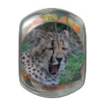 Sleepy Cheetah Cub Glass Candy Jar