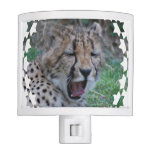 Sleepy Cheetah Cub Night Light