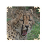 Sleepy Cheetah Cub Wood Wall Decor