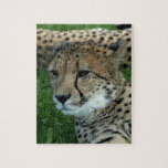 Spotted Cheetah Puzzle