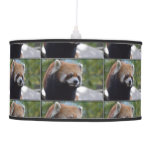 Sweet Red Panda Bear Ceiling Lamp