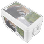 Sweet Red Panda Bear Chest Cooler