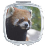 Sweet Red Panda Bear Compact Mirror