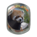Sweet Red Panda Bear Glass Candy Jar