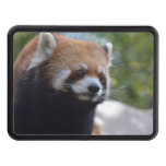 Sweet Red Panda Bear Hitch Cover