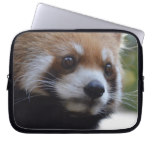 Sweet Red Panda Bear Laptop Sleeve